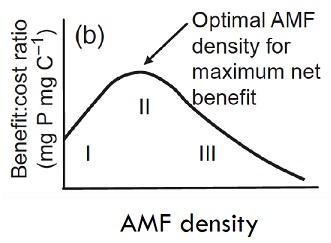 Variation des échanges en fonction de la densité du réseau mycélien.